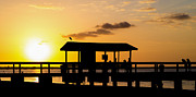 Tampa Photos - Sanibel Island Sunset by Edward Fielding