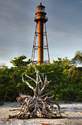 Florida House Posters - Sanibel Lighthouse IV Poster by Steven Ainsworth