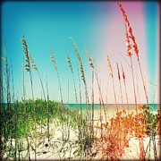 Sea Oats Framed Prints - Sanibel Sea Oats II Lights Framed Print by Chris Andruskiewicz