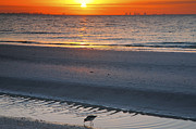 Framed Beach Print Photos - Sanibel Sunrise IV by Steven Ainsworth