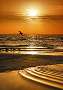 Framed Beach Print Photos - Sanibel Sunrise XVI by Steven Ainsworth