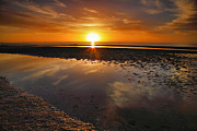 Framed Beach Print Photos - Sanibel Sunrise XX by Steven Ainsworth