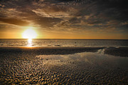 Beach Photograph Prints - Sanibel Sunrise XXVI Print by Steven Ainsworth