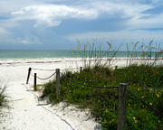 Rosie Brown - Sanibel Walkway
