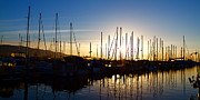 Panoramic Ocean Prints - Santa Barbara Harbor with Yachts Boats at Sunrise in Silhouette Print by ELITE IMAGE photography By Chad McDermott