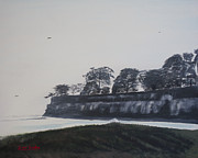 Santa Barbara Shoreline Park Print by Ian Donley