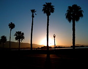 Colleen Renshaw - Santa Barbara Sunrise