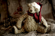 Stuffed Animal Prints - Santa Bear Print by Carol Leigh