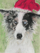 Border Collie Drawing Posters - Santa Blues Poster by Cori Solomon