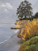 Maralyn Miller - Santa Cruz Cliffs