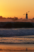 Paul Topp Art - Santa Cruz Harbor Lighthouse with Birds by Paul Topp
