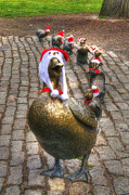 Winter Scenes Photos - Santa Ducks by Joann Vitali