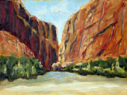National Park Paintings - Santa Elena Canyon by Robert Cook