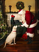 Attentive Labrador Dog Photos - Santa Giving the Dog a Gift by Diane Diederich