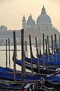 Domes Of Venice Photos - Santa Maria della Salute by gondolas by Sami Sarkis