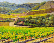 California Vineyard Paintings - Santa Rita Color by Terry Taylor