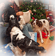 Christmas Dogs Prints - Santas Helpers Print by Steve Harrington