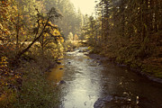 Oregon Photography Framed Prints - Santiam River in Autumn Framed Print by Bonnie Bruno