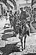 Donkey Photo Metal Prints - Santorini Donkey Train. Metal Print by Meirion Matthias