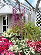 Judy Via-Wolff - Santuary Garden