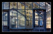 Reynolds Originals - Sapelo Greenhouse - Sapelo Island by Thomas Cato