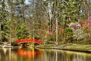 Bridges Art - Sarah P. Duke Gardens by Benanne Stiens