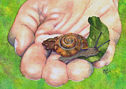 Snail Paintings - Sarahs Snail by Marie Stone Van Vuuren