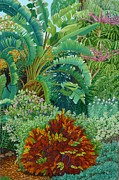 Sarasota Garden Print by Beverly Theriault
