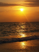 Twilight Framed Prints Prints - Sarasota Sunset Florida Print by Athala Carole Bruckner