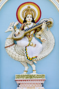 Hindu Goddess Photo Posters - Saraswati Poster by Tim Gainey