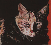 Cat Portraits Pastels Prints - Sasha Print by Pat Saunders-White