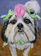 Shihtzu Prints - Sassie Sadie Print by Susan Jones