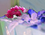 Linda  Smith - Saturday Violet Delight