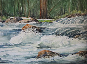 Waterfalls Paintings - Sauble Falls by Bev Morgan