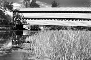 Ir Posters - Saucks Bridge and Reeds Poster by Paul W Faust -  Impressions of Light