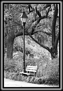 Forsyth Park Photos - Savannah Afternoon - Black and White by Carol Groenen