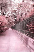 Savannah Street Scenes Framed Prints - Savannah Dreamy Pink Rod Iron Gate Fence Architecture Street With Palm Trees  Framed Print by Kathy Fornal