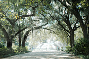 Fantasy Dreamy Oak Trees Posters - Savannah Georgia Forsythe Fountain Oak Trees With Moss Poster by Kathy Fornal