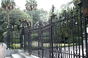 Savannah Fine Art Photography. Savannah Old Trees Prints - Savannah Georgia Mansion With Black Rod Iron Gates Print by Kathy Fornal