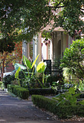 The Garden Bench Prints - Savannah Scenic Print by Suzanne Gaff