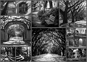 Savannah Georgia Prints - Savannah Shadows Collage Print by Carol Groenen