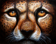 Cheetah Painting Posters - Save Me Poster by Danielle Trudeau