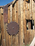 Marie-Pierre Sabga - Saw blade on Barn