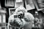 Toy Store Photos - Say Abominable by Scott  Wyatt