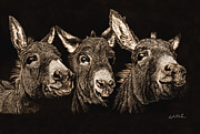 Donkey Drawings Prints - Say Cheese II Print by Joseph Robertson