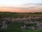 Cheney Prints - SCABLAND PRAIRIE at TWILIGHT Print by Daniel Hagerman