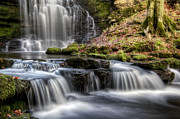 Bolton Abbey Posters - Scaleber Force Falls Poster by Chris Frost