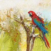 Colorful Owl Paintings - Scarlet Macaw by Catf