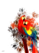 Parrot Art - Scarlet Macaw by Lourry Legarde