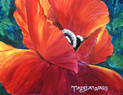 Close Focus Floral Prints - Scarlet Poppy Print by Tanja Ware
